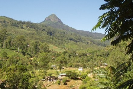 Adam's Peak from Dalhousie at the beginning of the pilgrimage trail, Sri Lanka