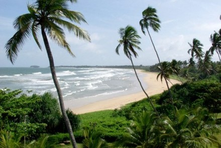 Strand of golden sandy beach fringed by palms near Club Villa, Bentota, Sri Lanka
