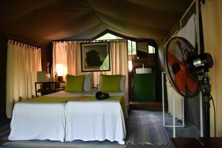 Mahoora Premium tent, Sri Lanka