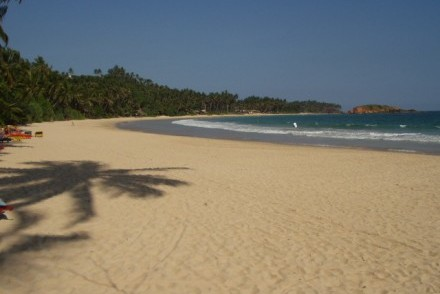 Palm-fringed sandy beach and crescent-shaped bay, Mirissa, Sri Lanka