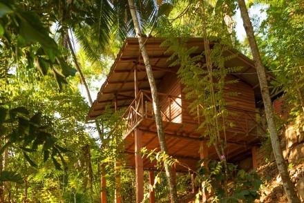 Polwaththa Eco Lodges, Digana, Sri Lanka