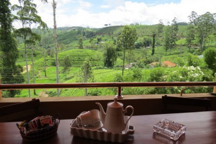 View over neighbouring tea estates from Tea Hills Bungalow, Hatton, Sri Lanka
