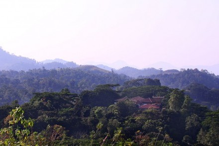 Tree of Life Nature Resort, Yahalathenna, Kandy, Sri Lanka