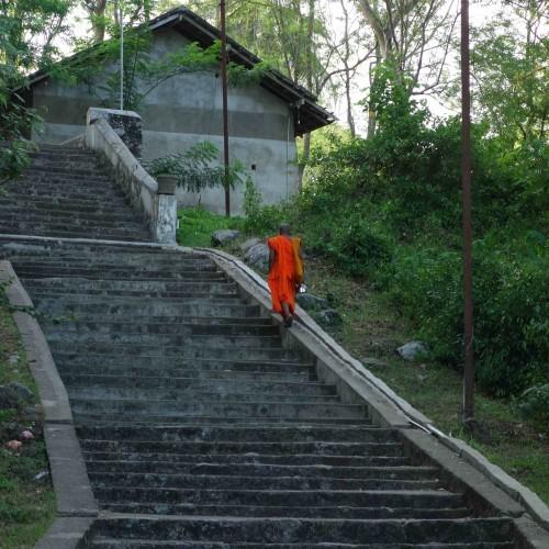 Monk ascending temple steps, Sri Lanka