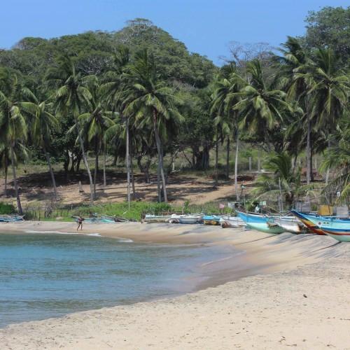 Fishing boats on an east coast beach, Sri Lanka