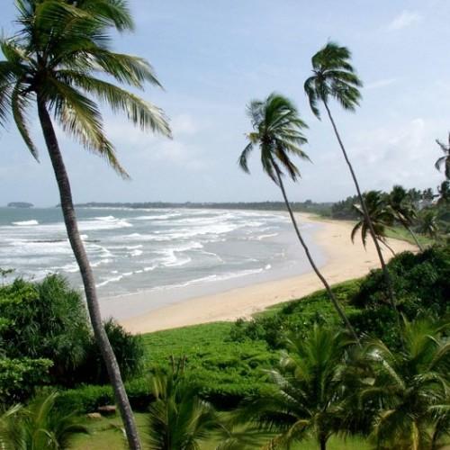 Golden sandy beaches abound along the west coast of the island, Sri Lanka