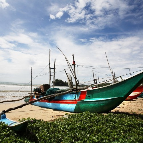 Traditional catamaran fishing boat on a west coast beach, Sri Lanka