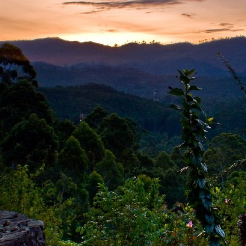 Sunset at Ella, Hill Country, Sri Lanka