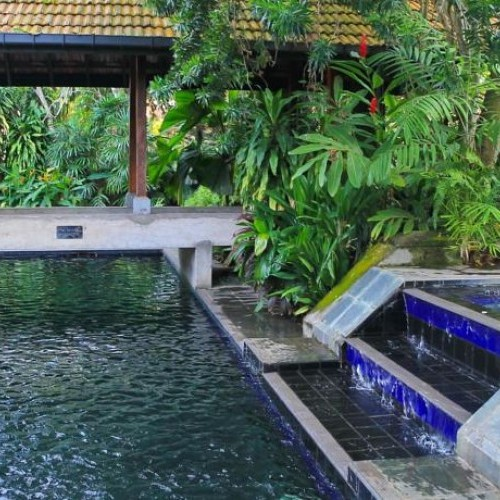 Garden and pool at havelock Place Bungalow, Colombo, Sri Lanka