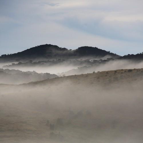 Misty mountains at dawn, Horton Plains, Sri Lanka