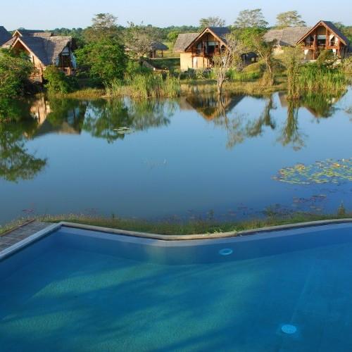 Water Villas at Jetwing Vil Uyana, Sigiriya, Cultural Triangle, Sri Lanka