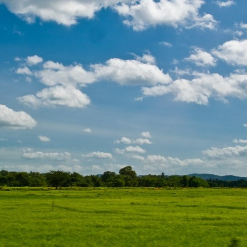 Open skies and open vistas, Minneriya National Park, Sri Lanka