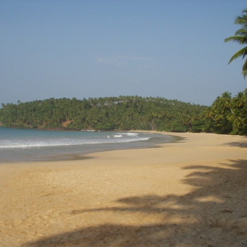 Crescent-shaped bay and sandy beach, Mirissa, Sri Lanka