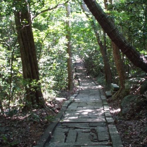Main path, Ritigala Forest Monastery and Cave Hermitage, Sri Lanka