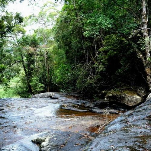 Rapids, Sinharaja Biosphere Reserve around The Rainforest Ecolodge, Sinharaja, Sri Lanka