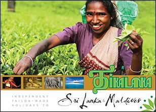 Tikalanka Tours PDF brochure